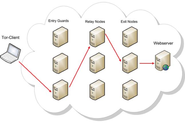 Tor vs  I2P — DarkOwl - Darknet Big Data