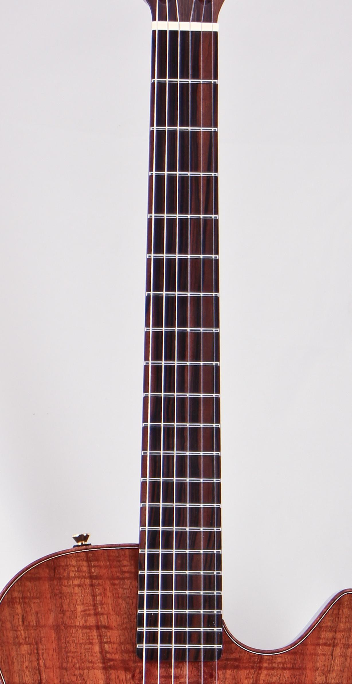 macassarcab-3.JPG