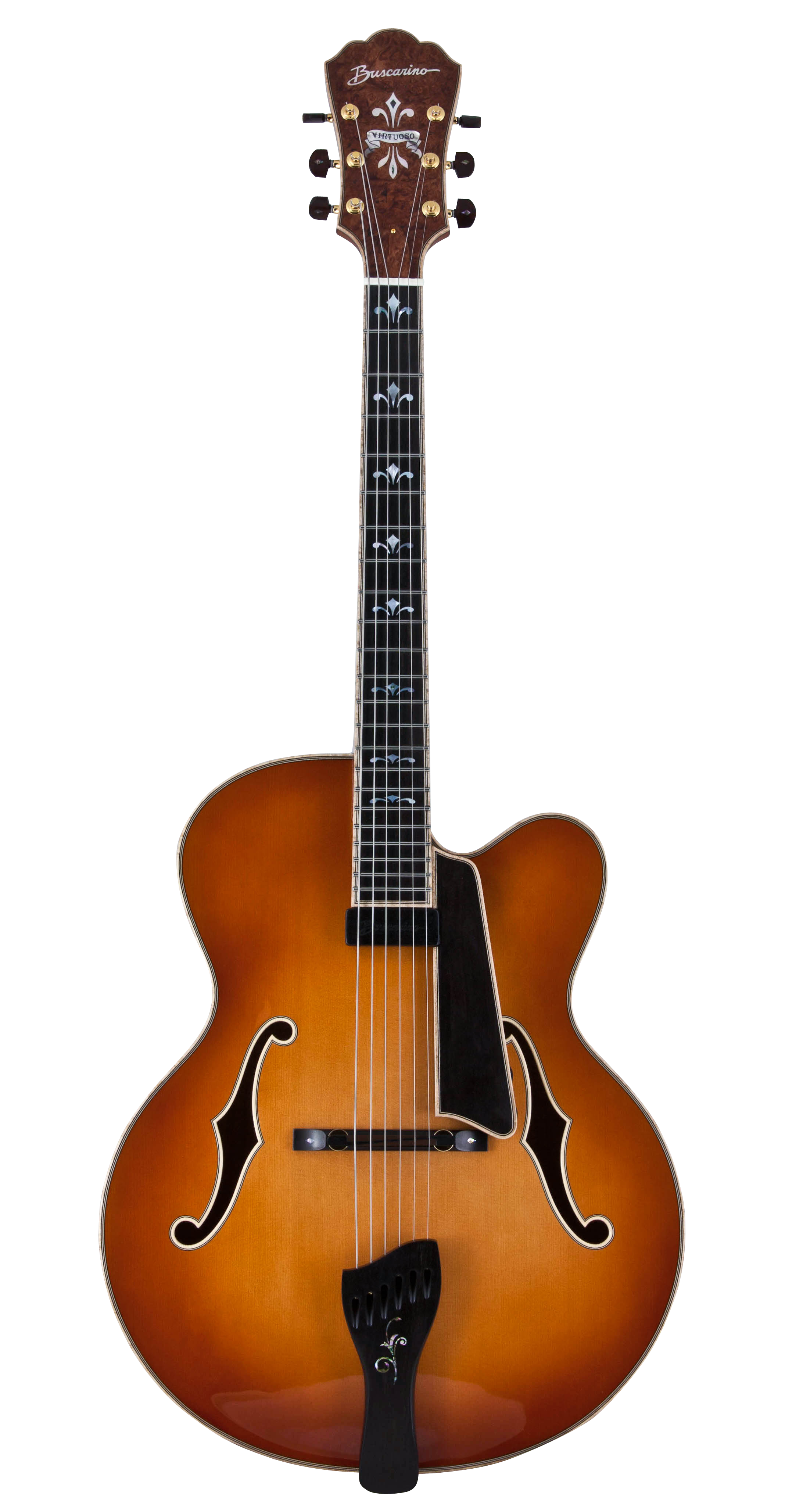 The Virtuoso Archtop