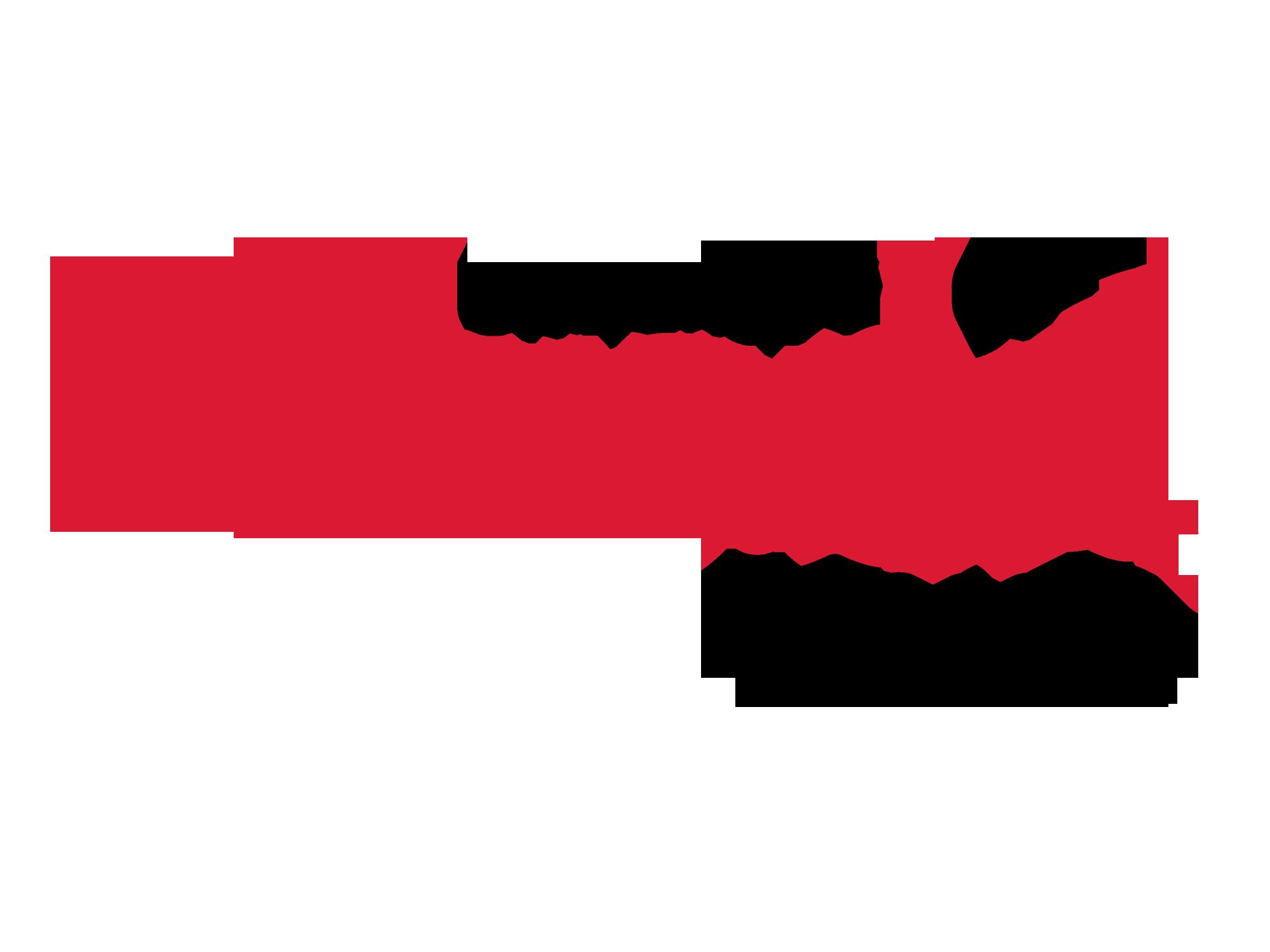 Logo, Speaking Engagement_University of Nebraska-Lincoln_mounted_FAV.png