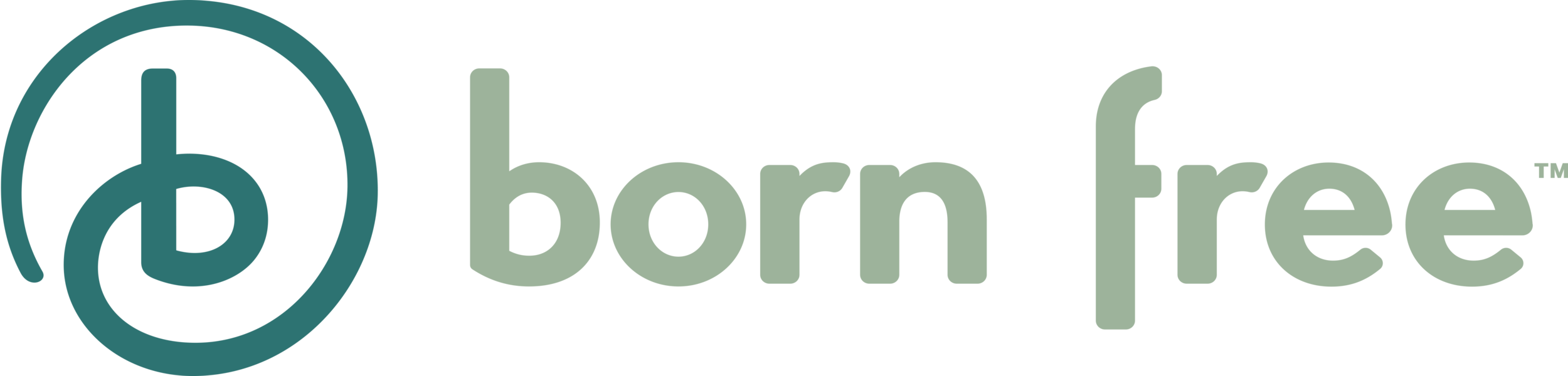 SUMR Brands_bornfree Logo_temp.png