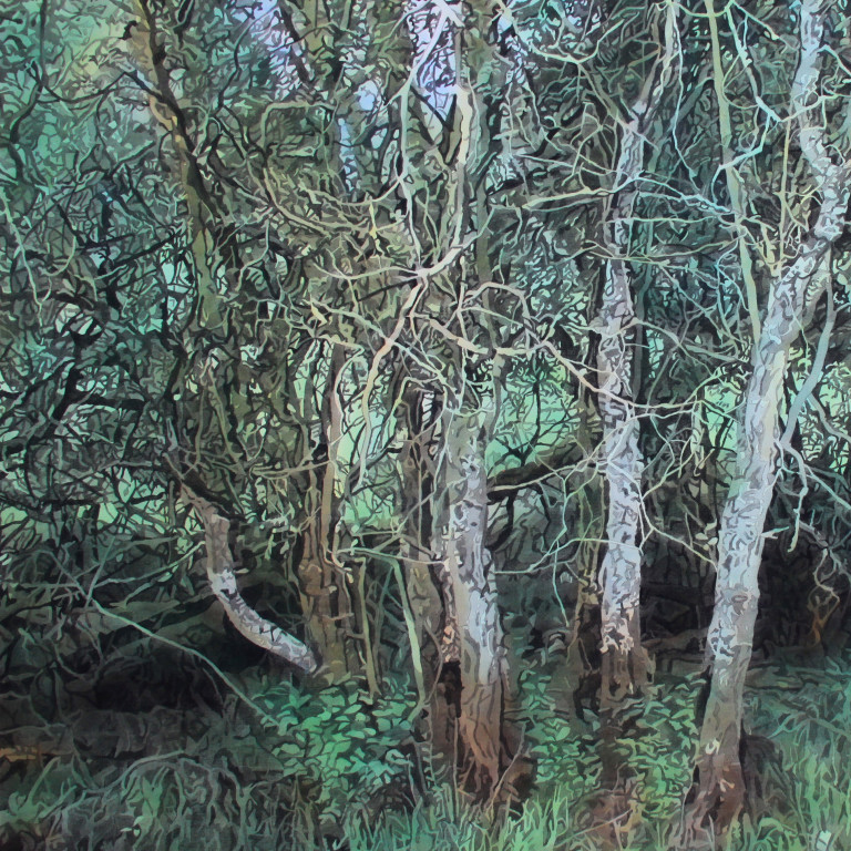 Tim Craven   - Website Member of the ArborealistsFeature: Paper Earth Vol.1UK