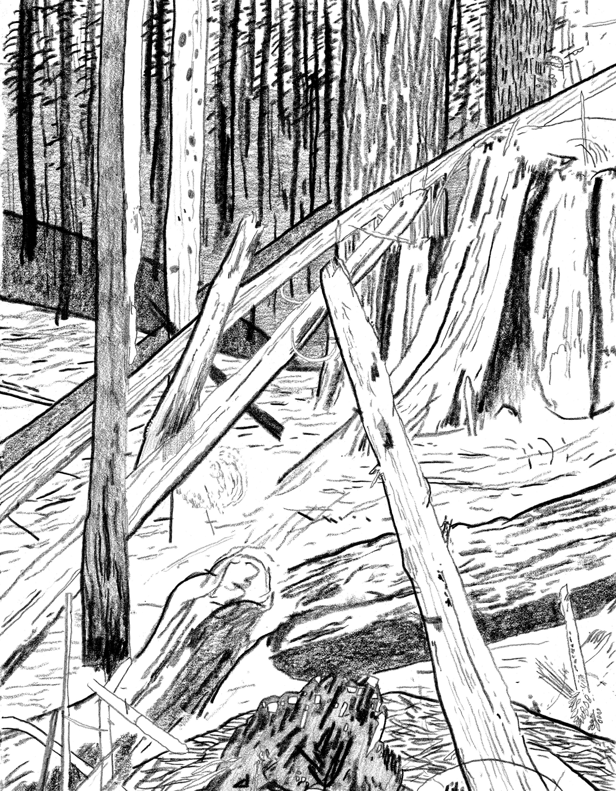 Heaps Near Coquitlam - Graphite On Paper - 8.5'' x 11'' - 2017