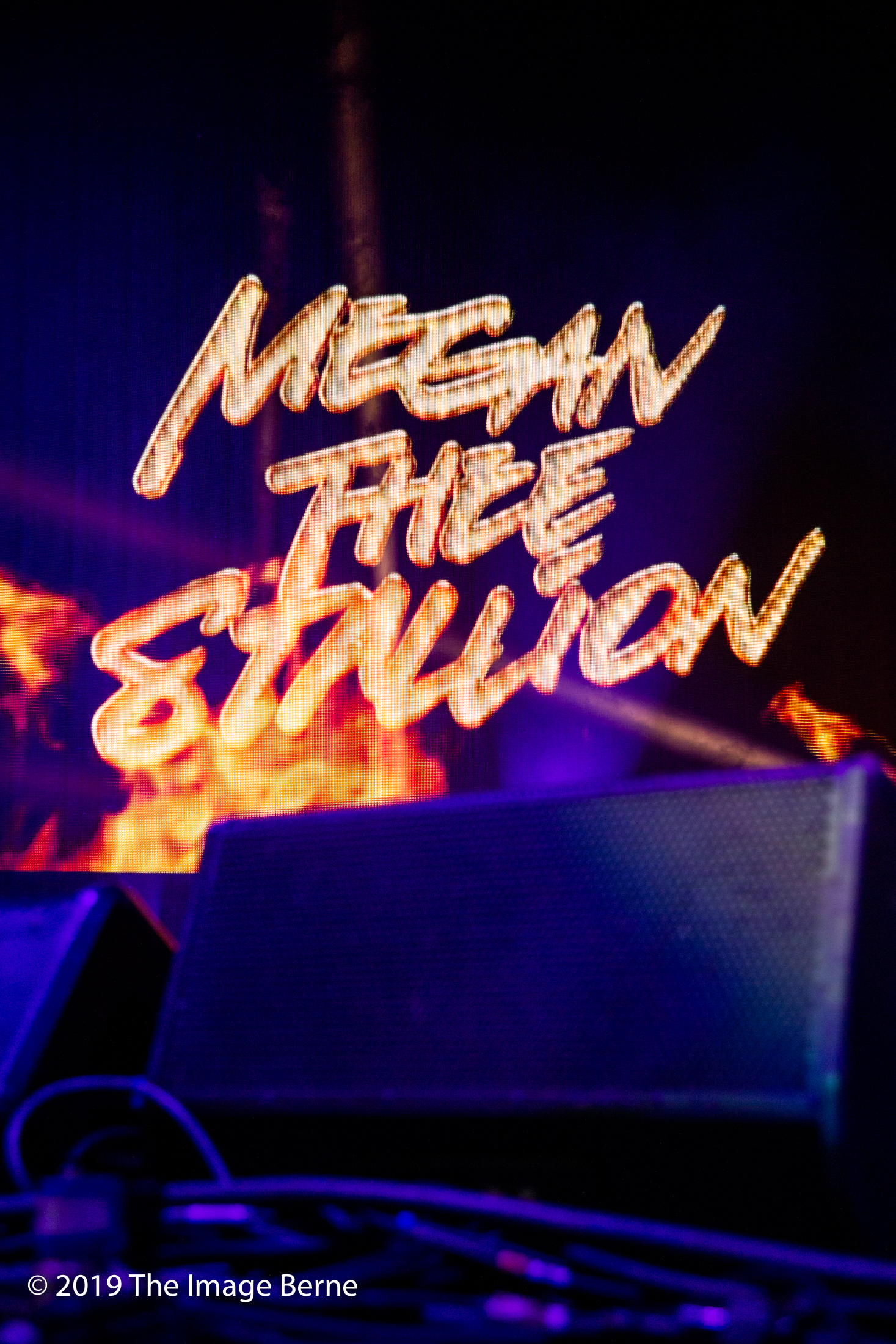 Megan Thee Stallion-062.jpg