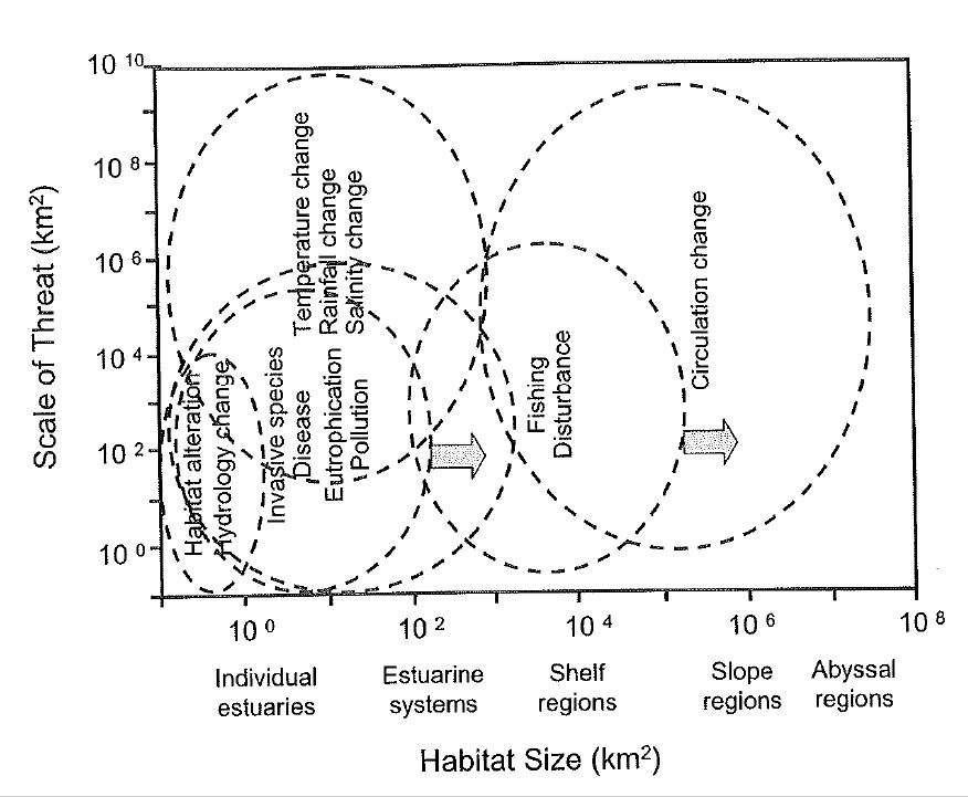 Scales of threats to marine Sediment habitats