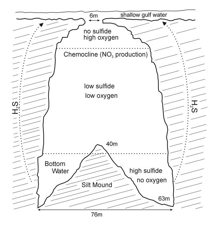 Diagram of Jewfish sink