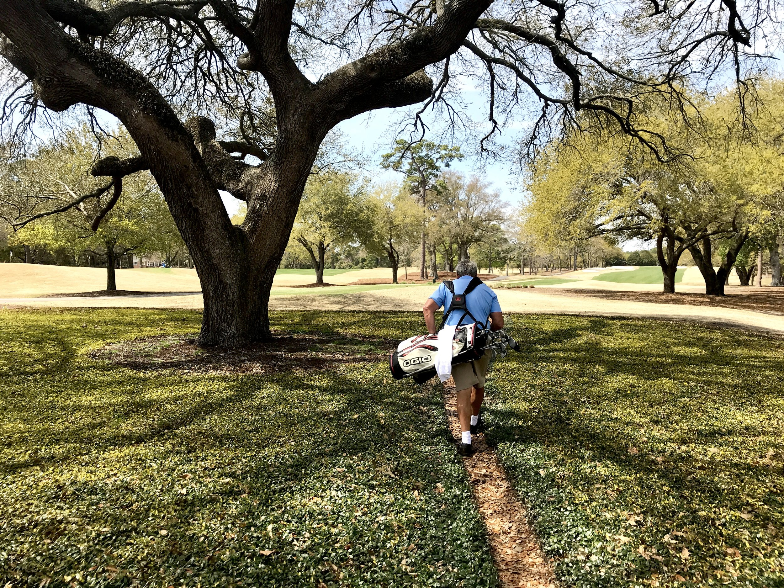 Longtime Dunes Club member Tommy Brittain troupes through paths maintained for the convenience of the club's substantial contingent of walkers.