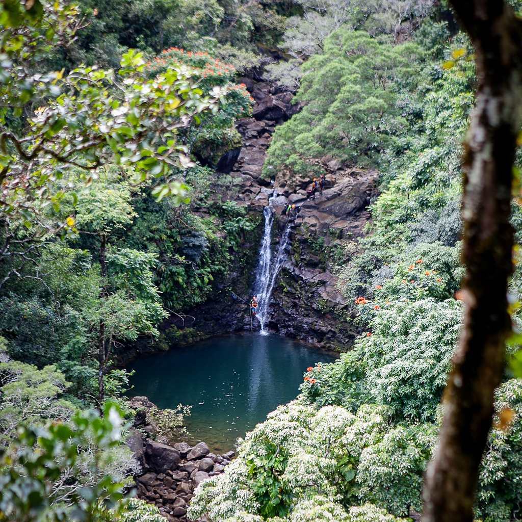 Road to Hana Guide | Gypsy Guide for the Road to Hana | Best Sites on the Road to Hana, Maui via @ginkaville + ginkaville.com