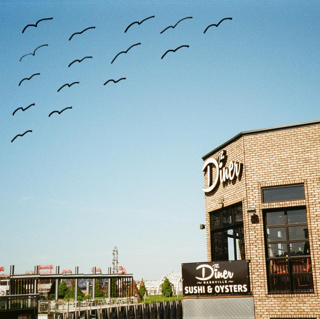 Nashville Film Photography via @ginka + ginkaville.com
