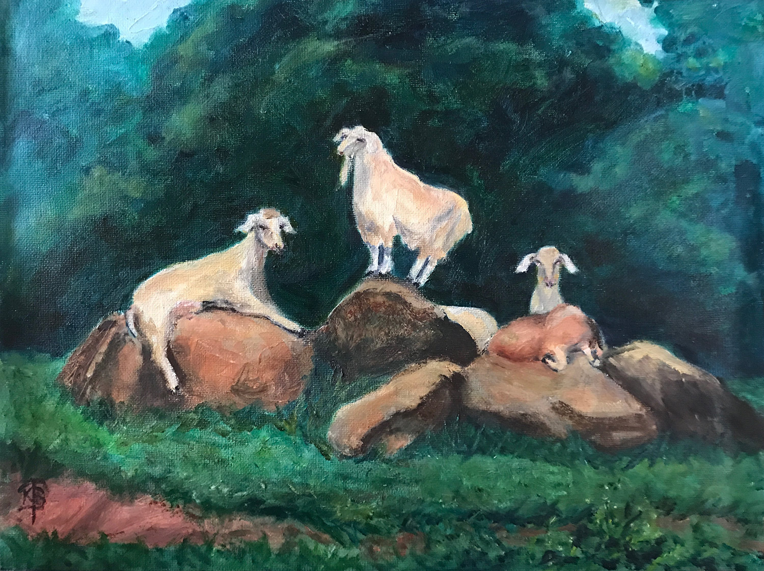 Copy of Goats on Boulders
