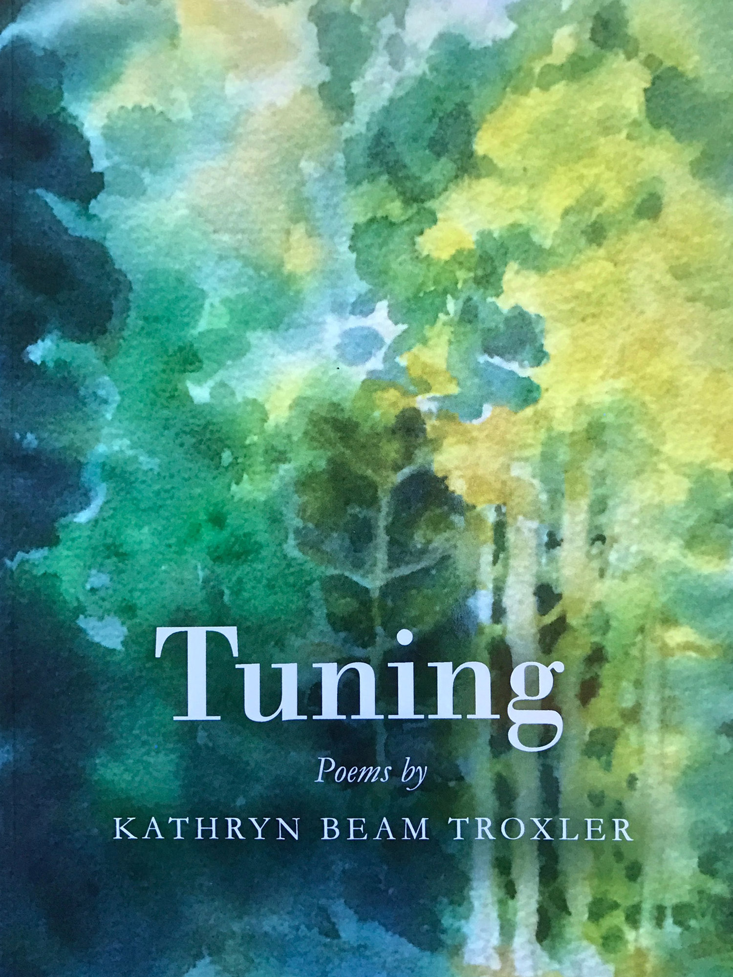 Click to learn more about my book,  Tuning