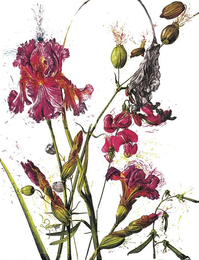 Iris & Sweet Pea