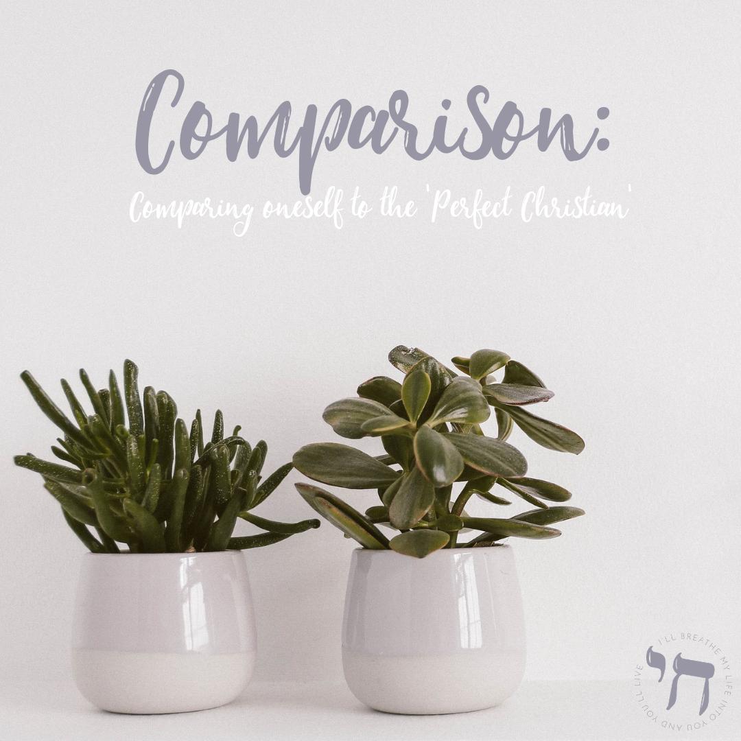Comparison Blog Post Pic.png