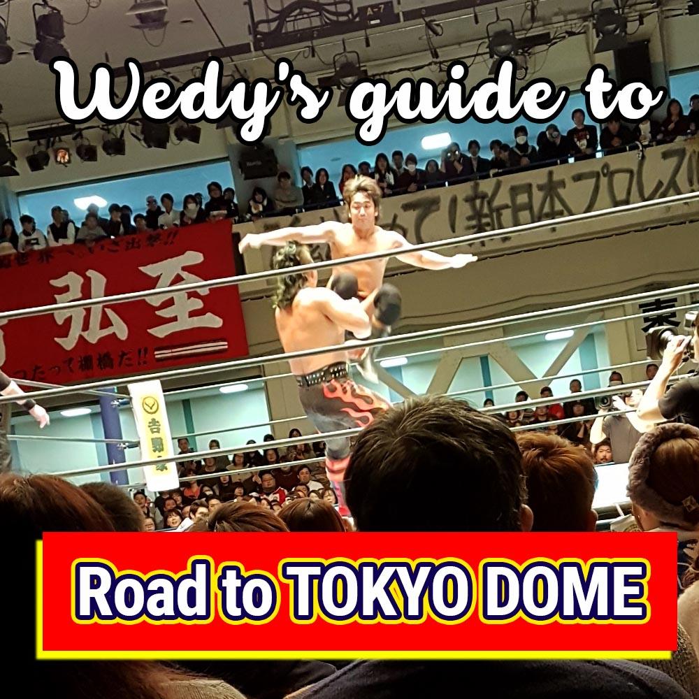 wedy jones guide to tokyo dome