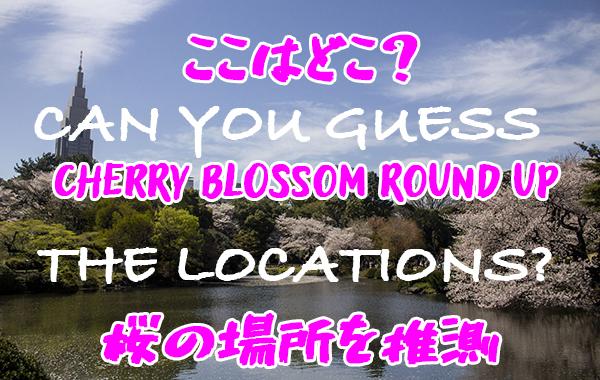chery-blossoms-tokyo-2019.jpg