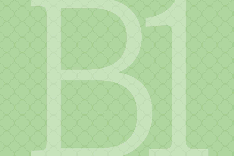 b1_1500x1000.jpg