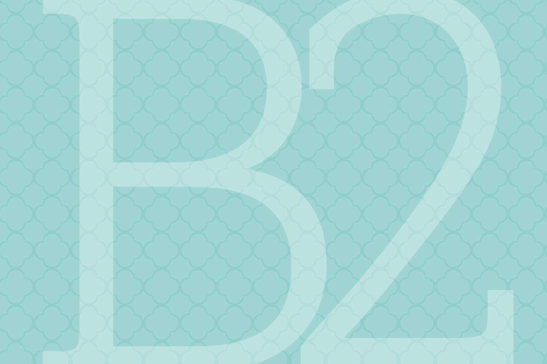 b2_1500x1000.jpg
