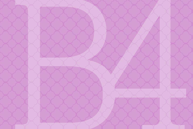 b4_1500x1000.jpg