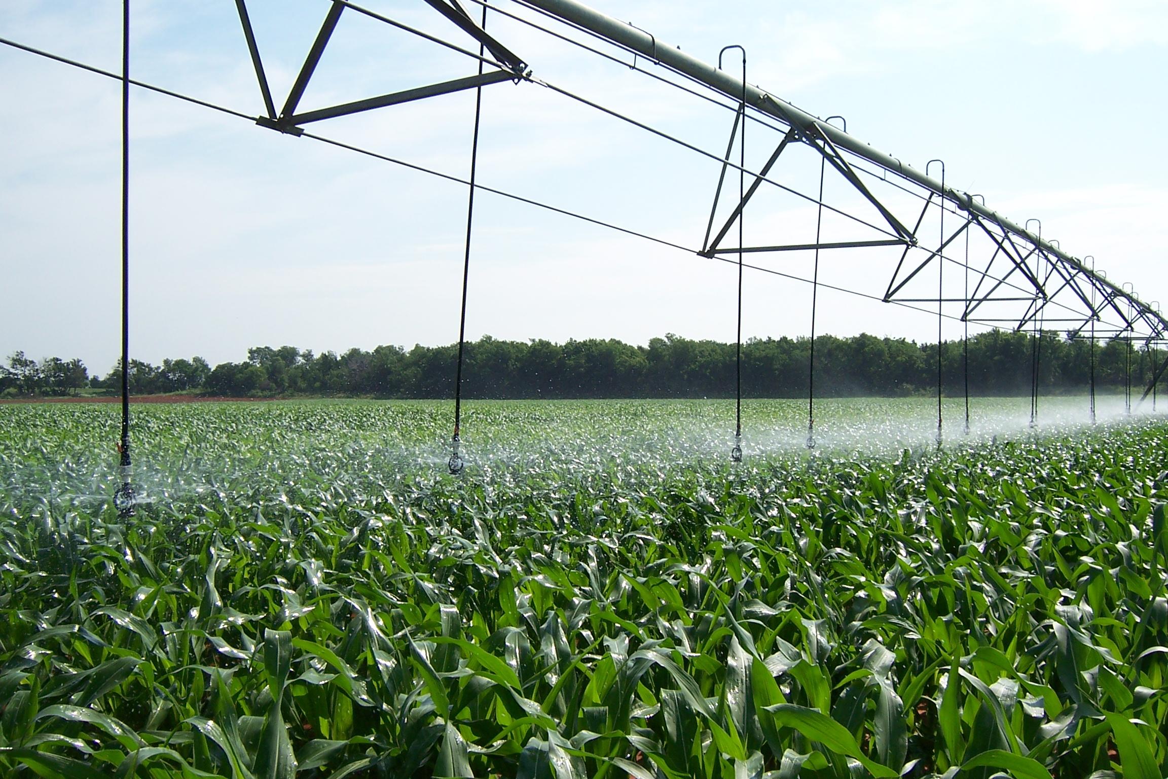 pest management / irrigationtechnician -