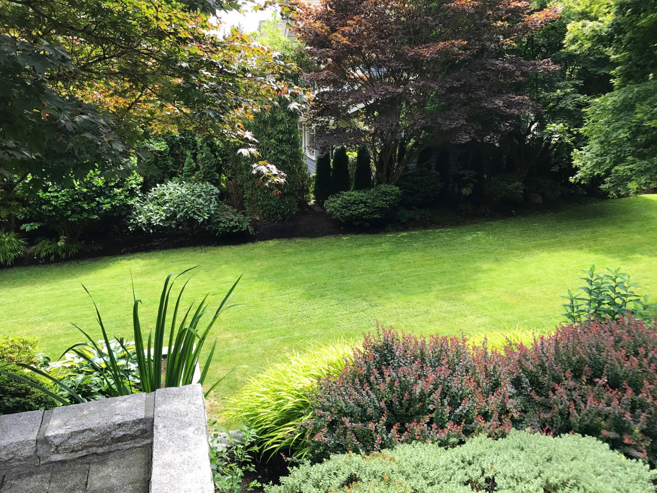 Lighting & Irrigation Projects -