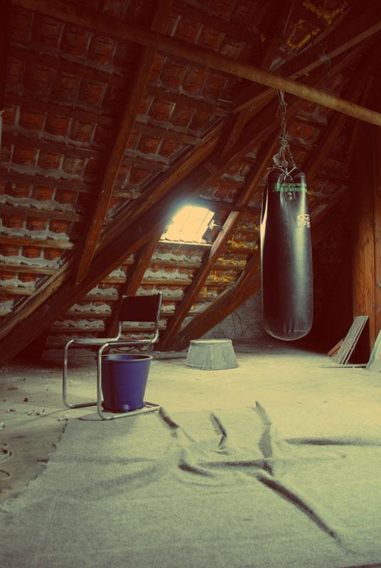 denmark_boxer_800.jpg
