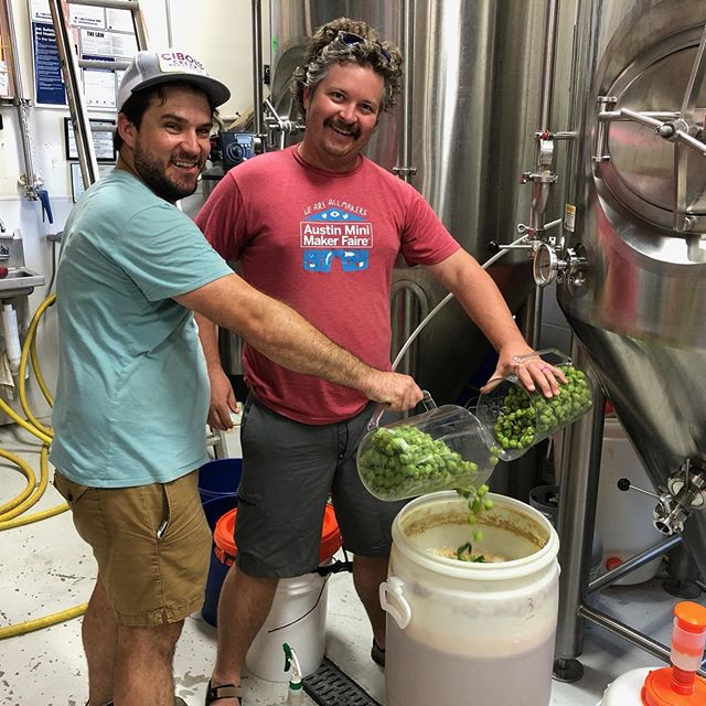 First Hopperdashery wet hop beer of the season by the wonderful Ty Wolosin @windyhilltx @cibolocreekbrewingco  The second incarnation of the Zeus is loose. We can't wait for September to drink it. Yummers. #texashops #hops #craftbeer #atx #happy #hopfarm #wethop #firstbrew #beer