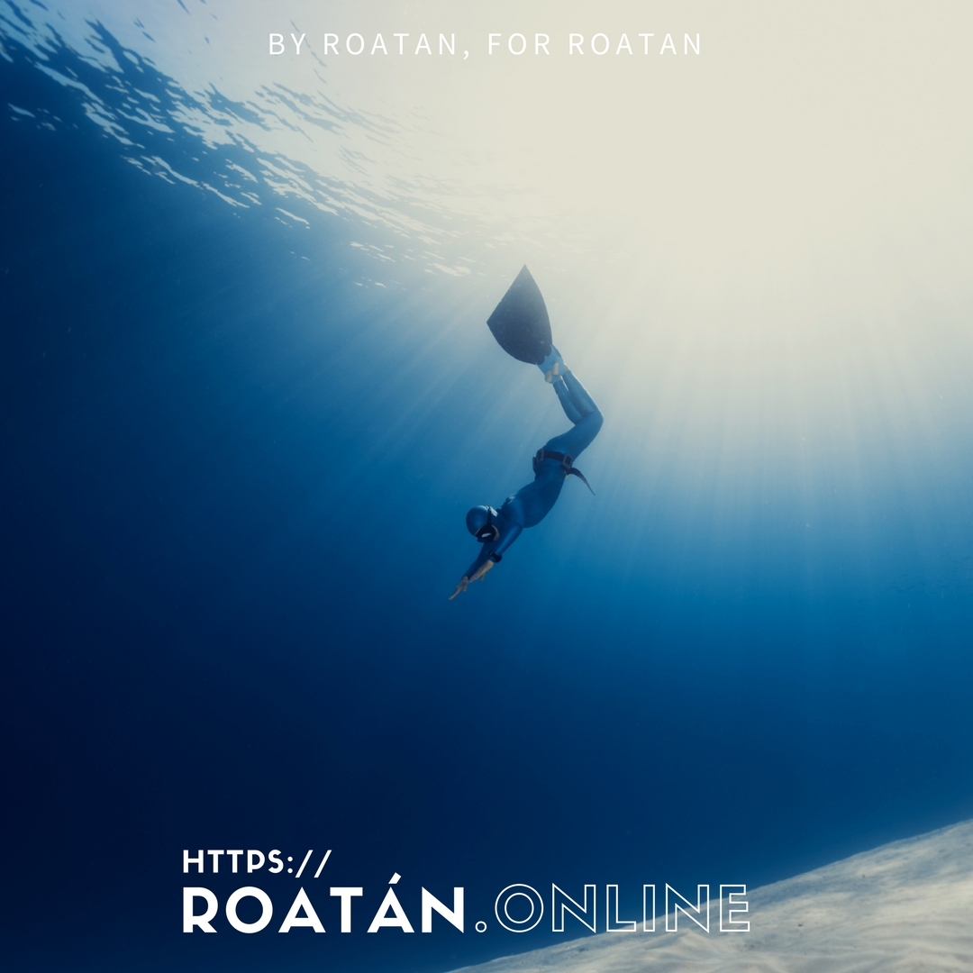 Deep Freedive in Roatan