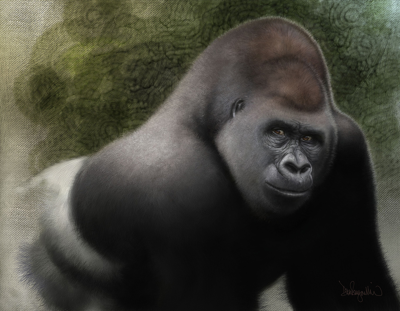 "3. ""Lowland Gorilla"" One of several paintings for   ""IN DANGER"" (Project Safehaven004), a book of images of critically endangered animals from around the world. http://www.expeditionart.org/in-danger-book/  Medium: Digital using Painter and Photoshop. Scale/resolution: The art will print 9"" x 12"" in the book. Year Created: 2017"