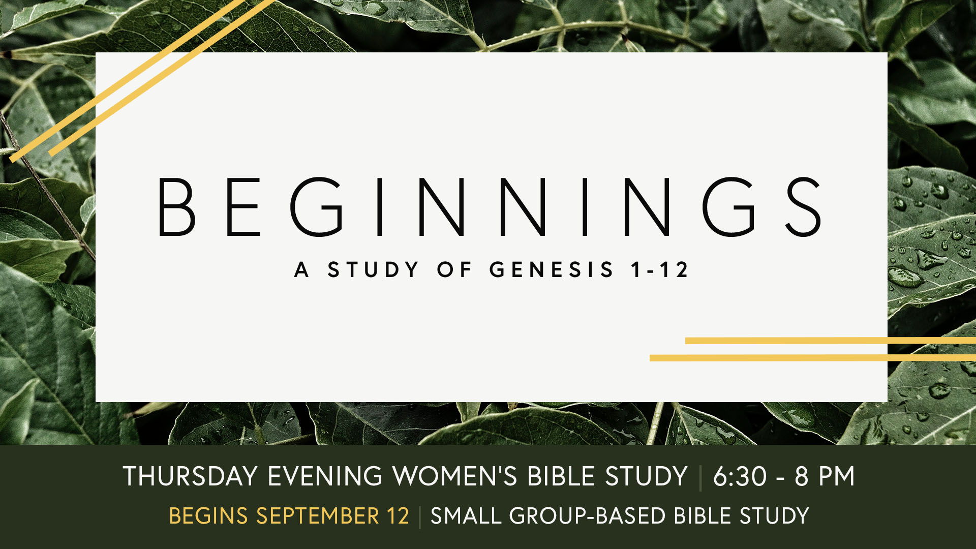 Beginnings Bible Study - Announcement Slide.jpg