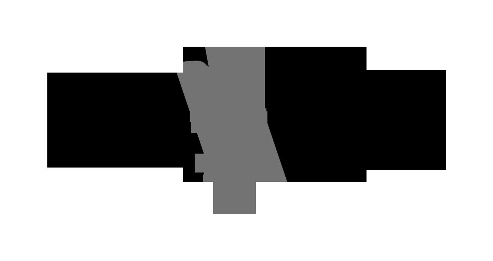 havis_logo_grayscale_positive_png_5-09.png