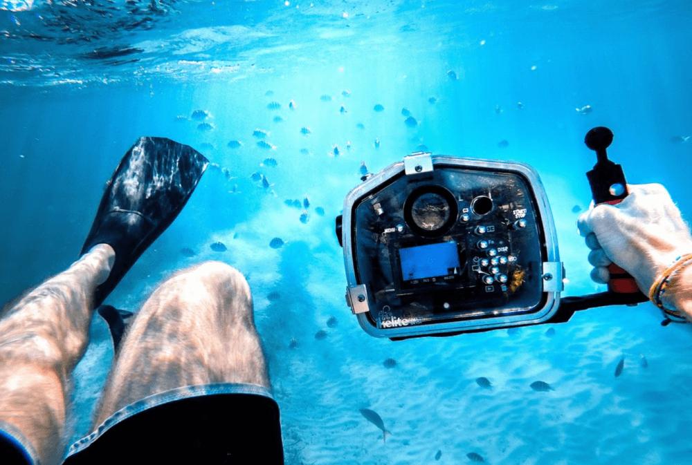 bay_of_islands_diving_new_zealand_scuba_diving.png