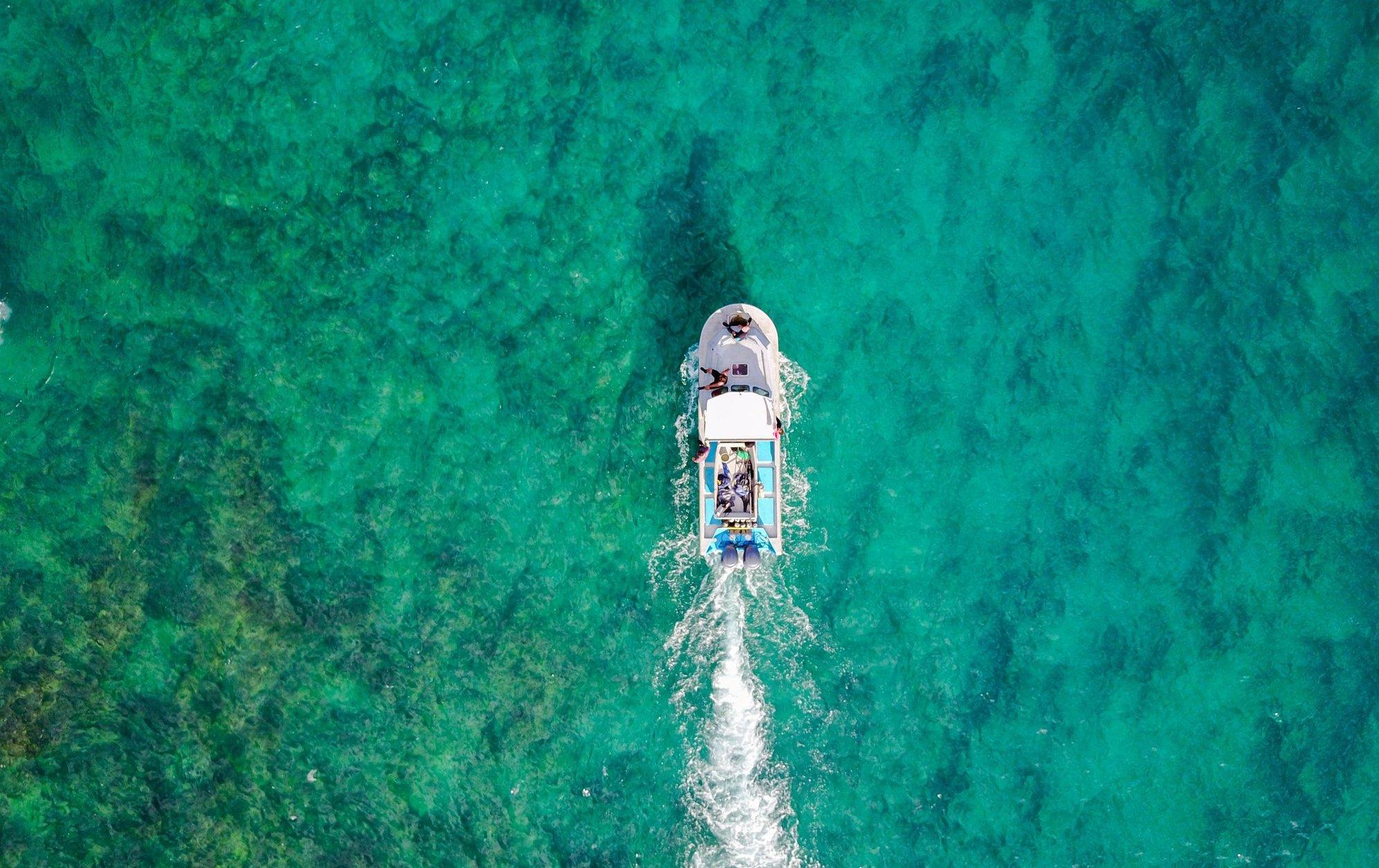 scuba_diving_northland_new_zealand_huntaway_ldoge.jpg