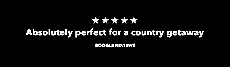 google rev.png
