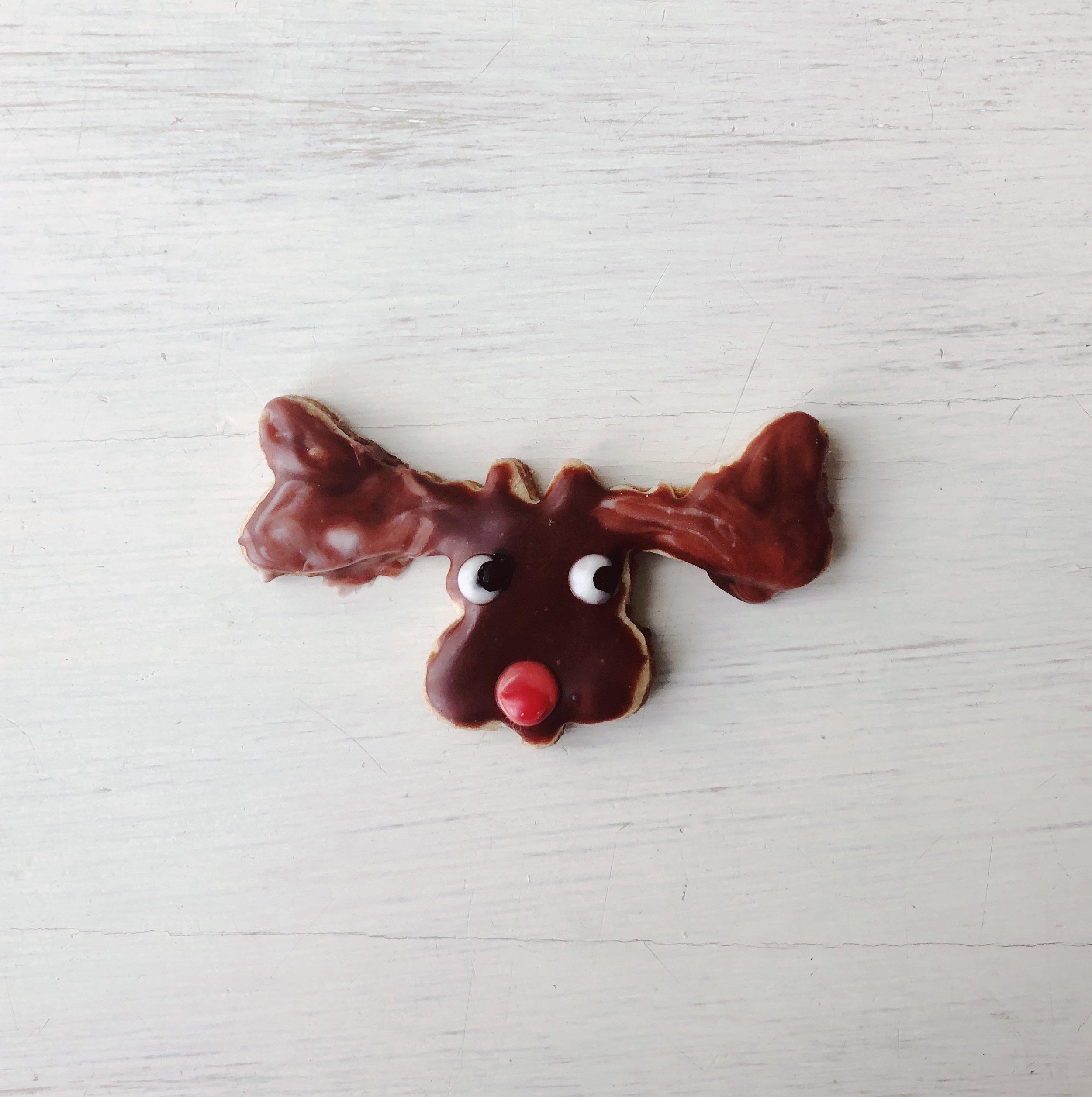 Moose cookie