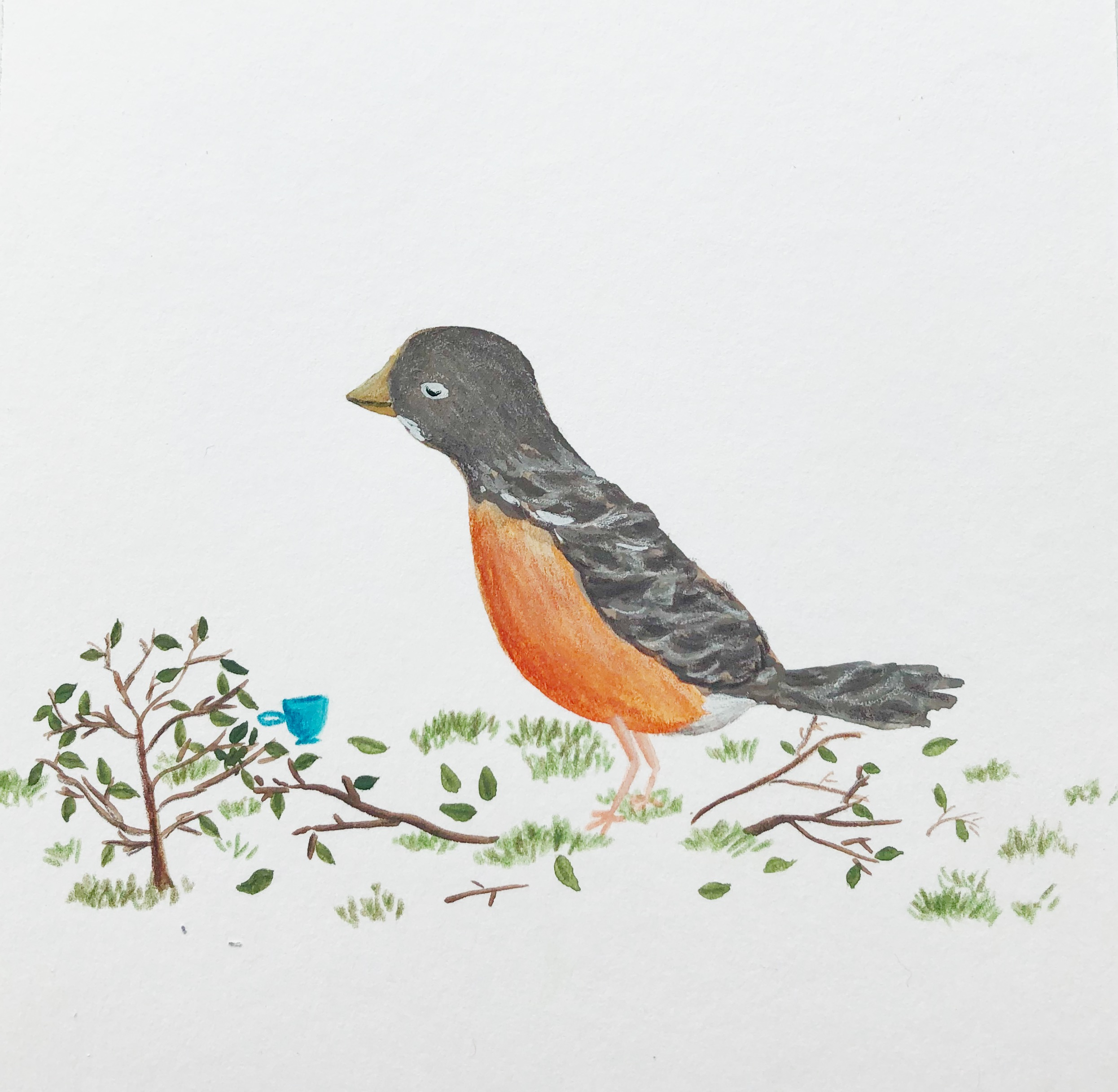 Robin by Wandering in Whimsy