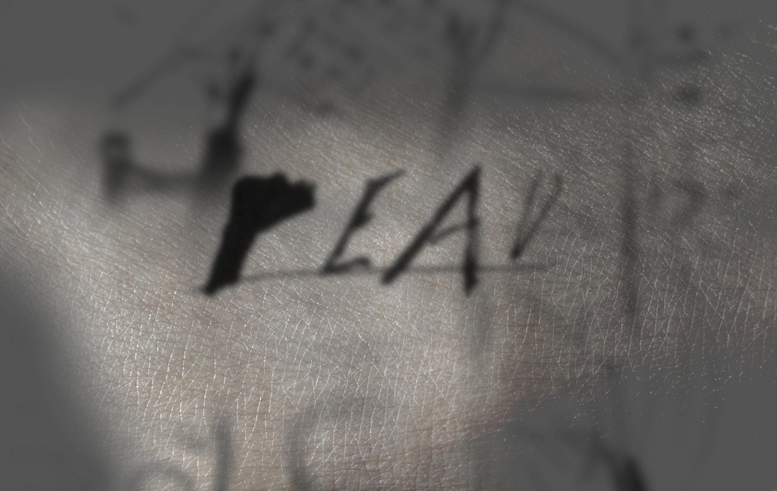 3.im5_11.jpg
