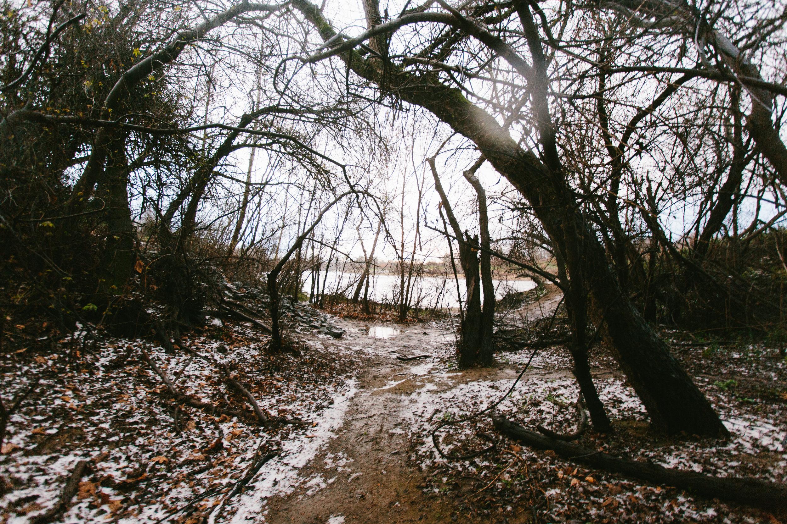 Snow-1-16.jpg