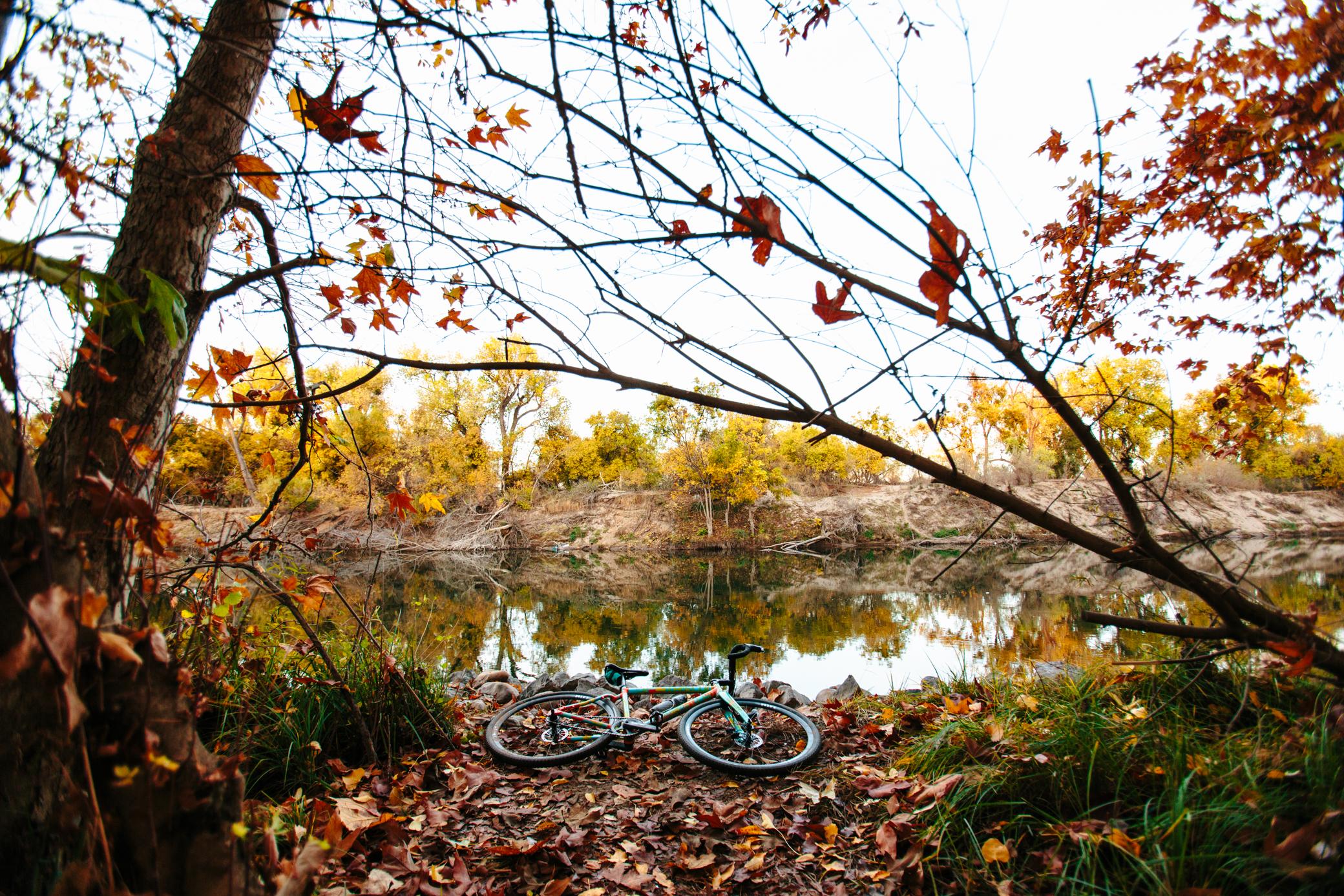 Fall 9.jpg