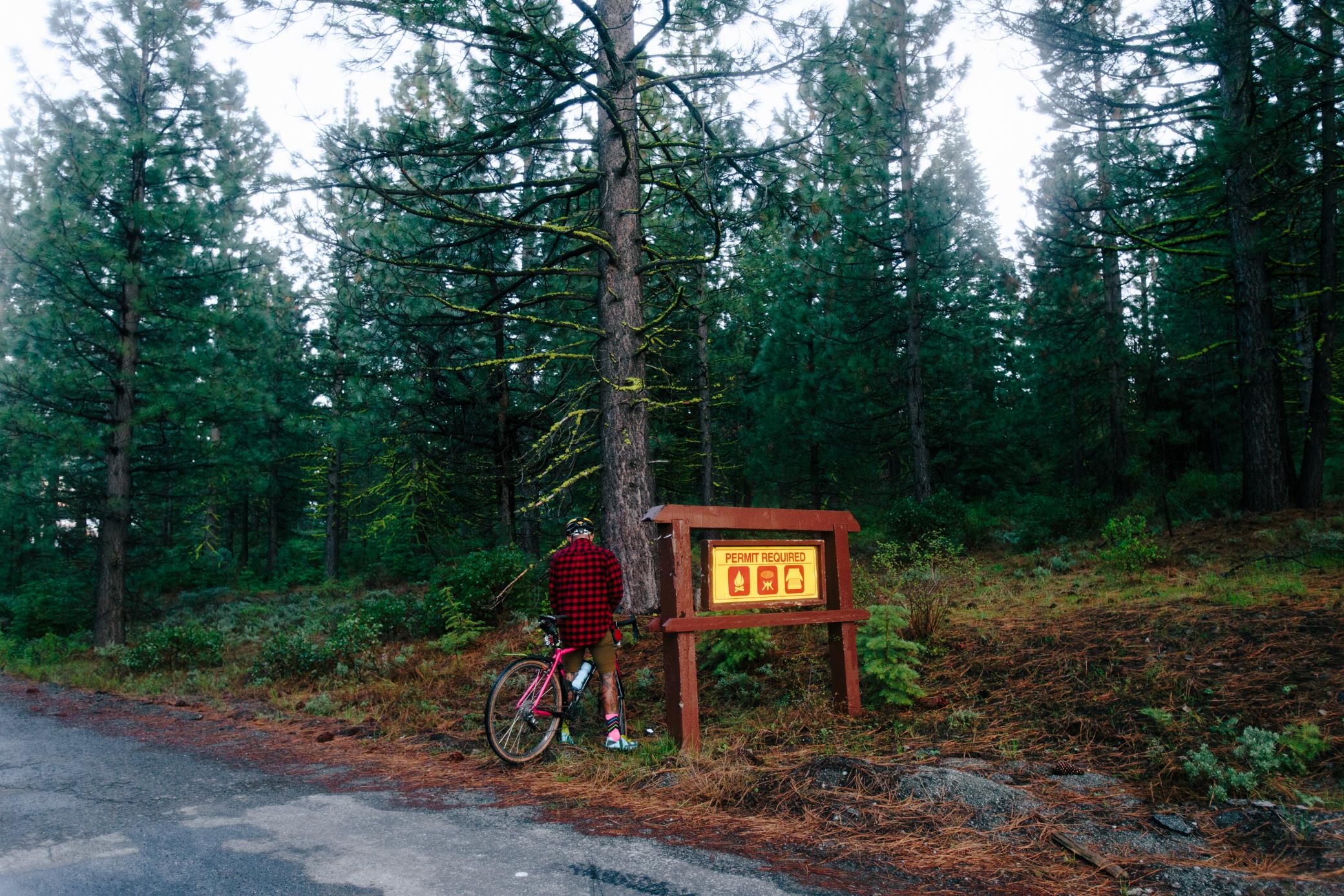 Lost & Found 19.JPG