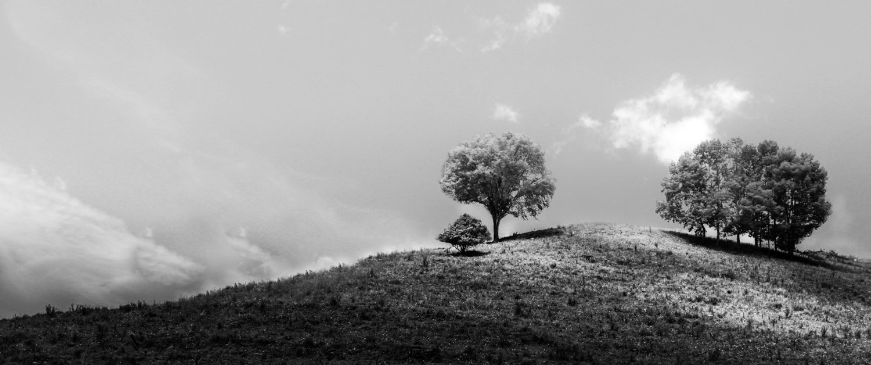 untitled (66 of 66)-Edit.jpg