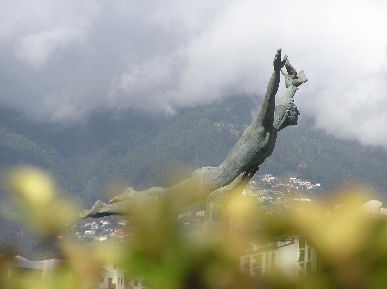 #10 Soaring in Funchal.JPG