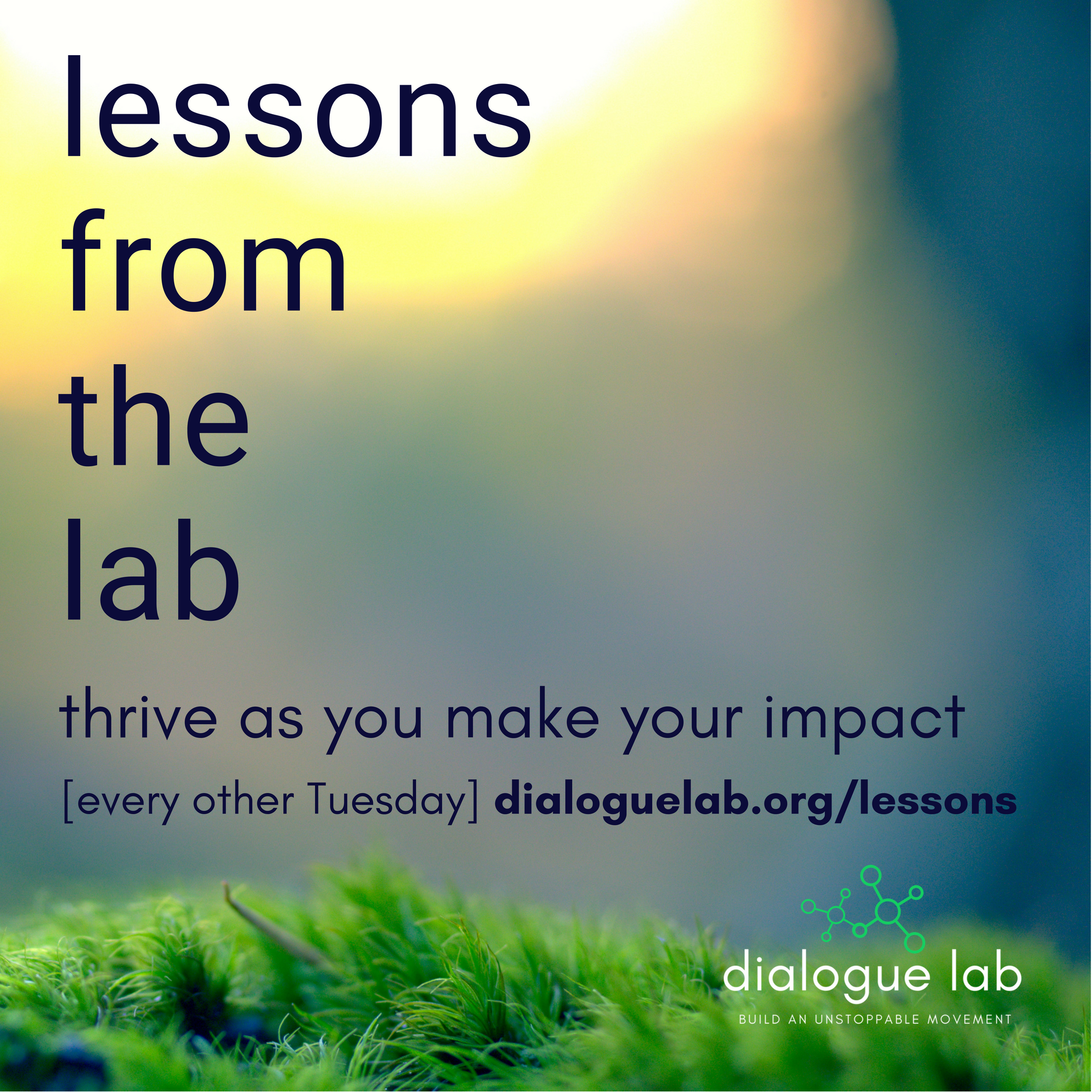 Copy of Lessons from the Lab (3).png
