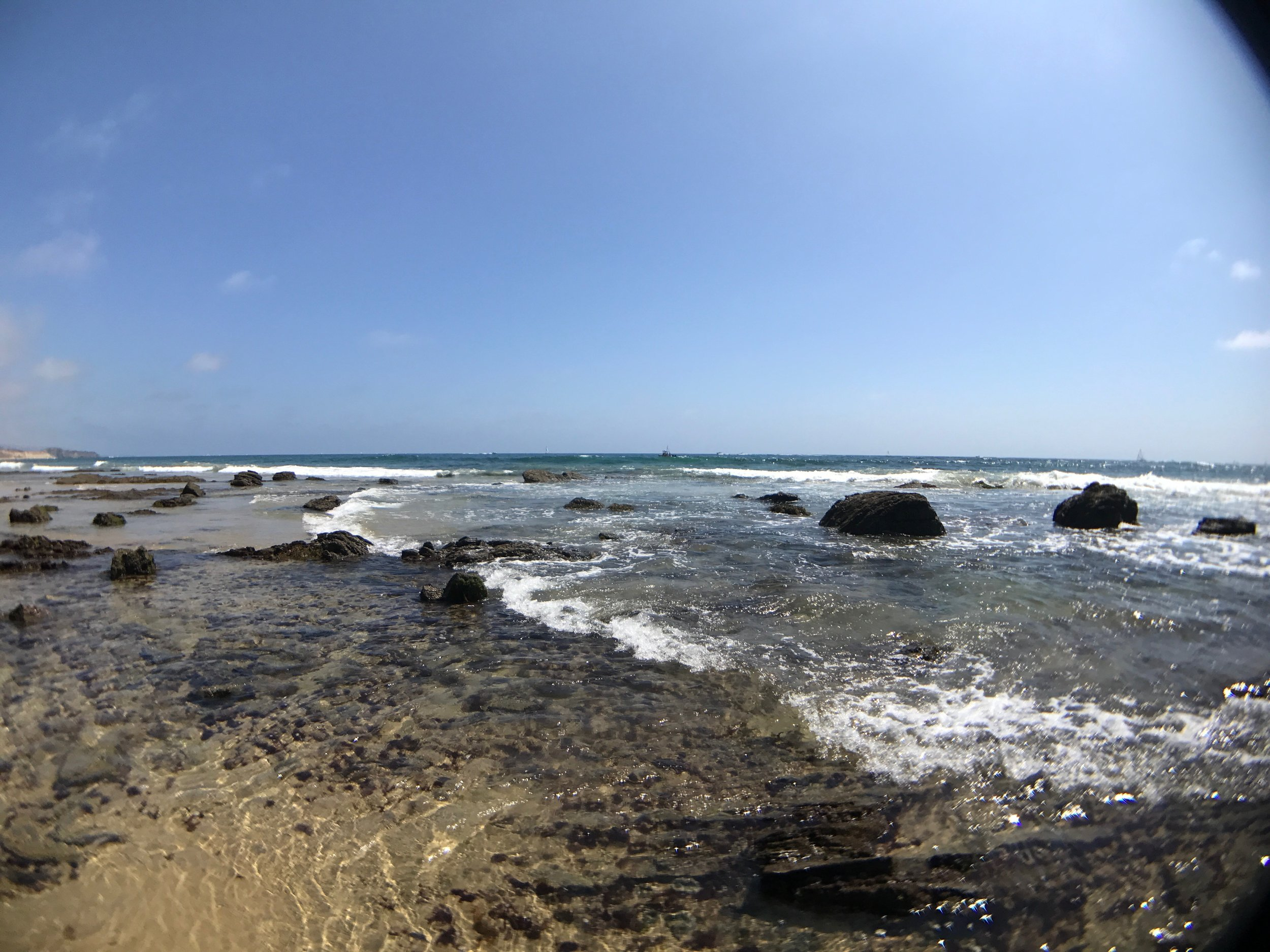 Crystal Cove, waiting for the tide to go out