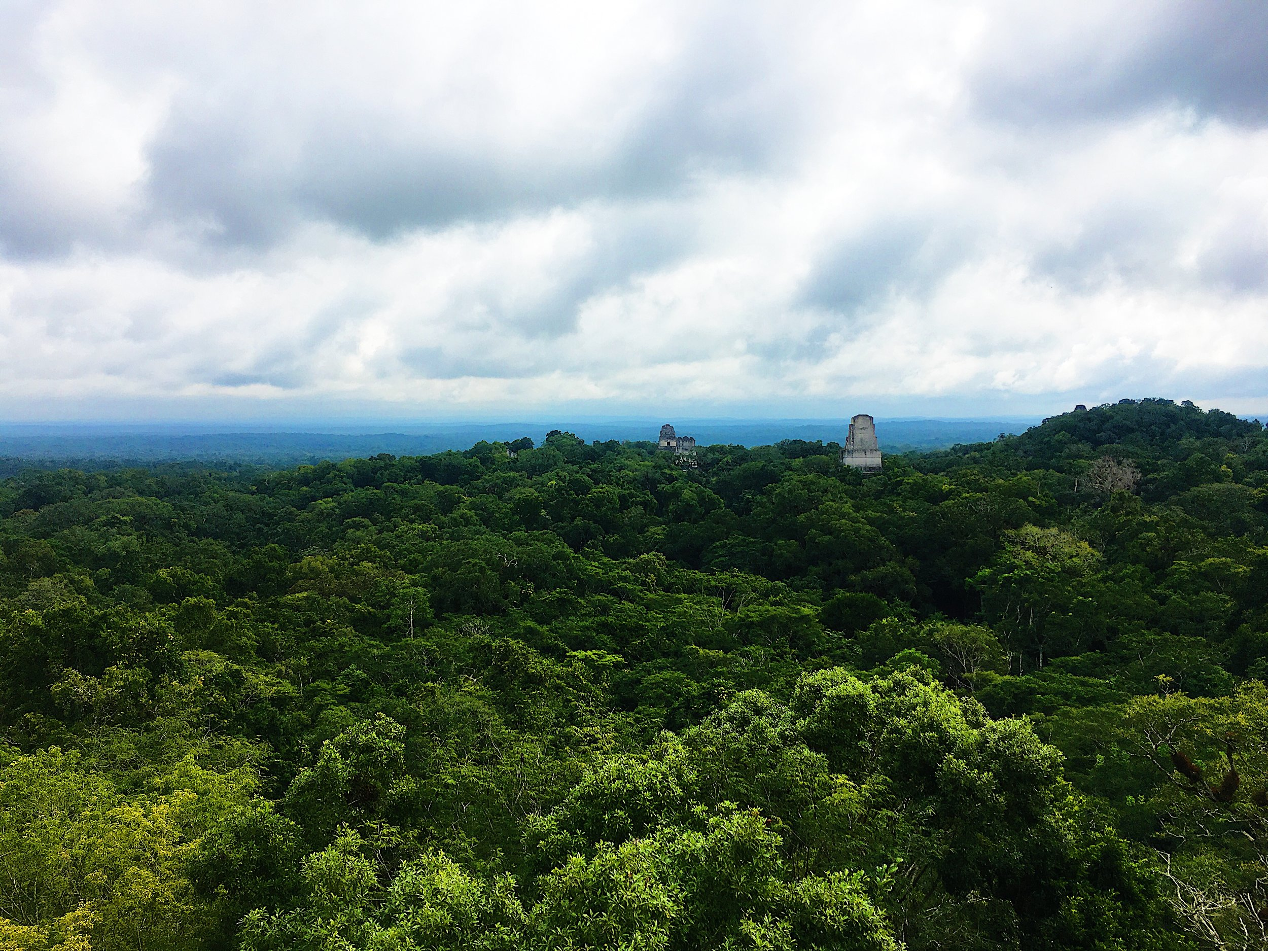 View from Temple IV.  For trivia buffs, the viewhere was used as Yavin 4 in Star Wars: Episode IV A New Hope.