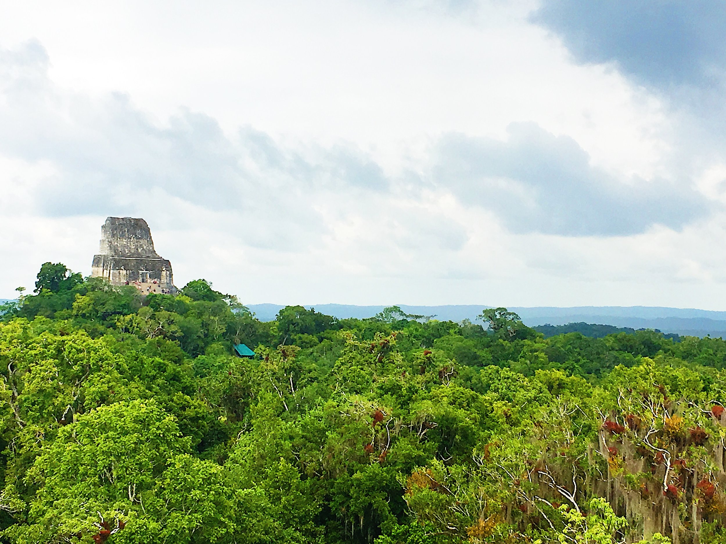 The view of Temple IV from El Mundo Perdido.