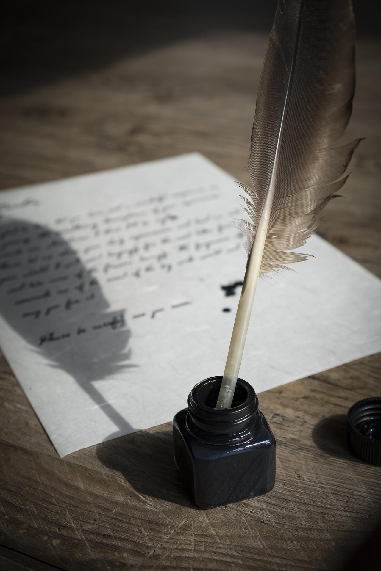bird-feather-2505307_1920.jpg