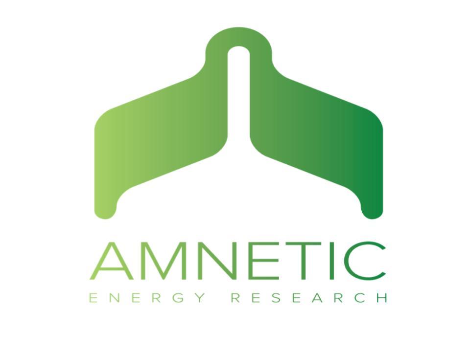 Amnetic Rick.jpg