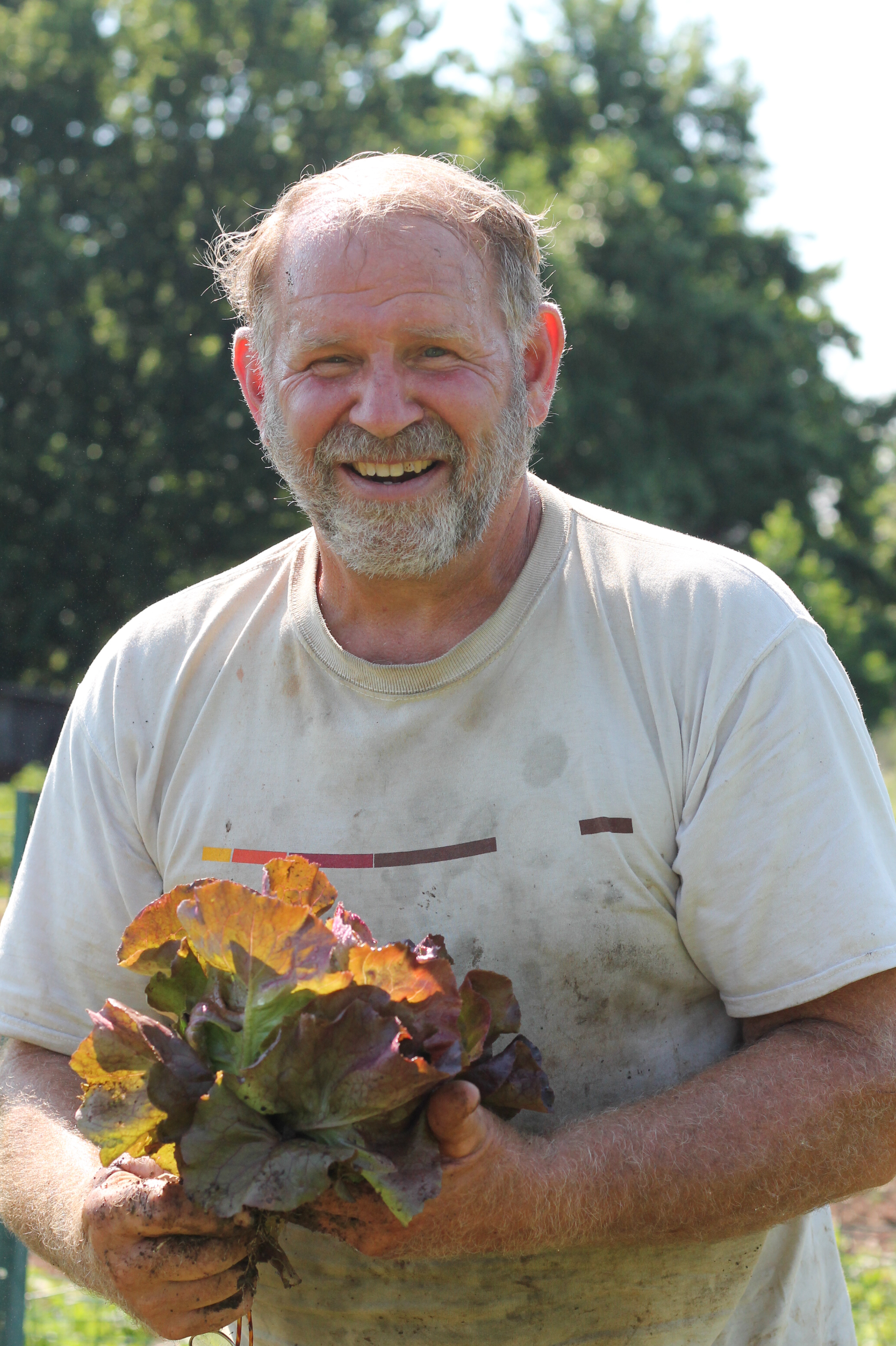Andy - Andy started Amberland Farm in 2007 in his backyard in Upper Southampton, Bucks County, Pennsylvania. He was a charter vendor at the Wrightstown Farmers Market for 5 years. His growing space now includes the old community gardens at Bryn Athyn College and hoop houses at Russell Gardens Wholesale. As a 1979 graduate of Delaware Valley University with a BS degree in Ornamental Horticulture, farming and gardening come naturally. Andy's passion for growing local nutrient dense produce is rooted in education and lifelong learning.