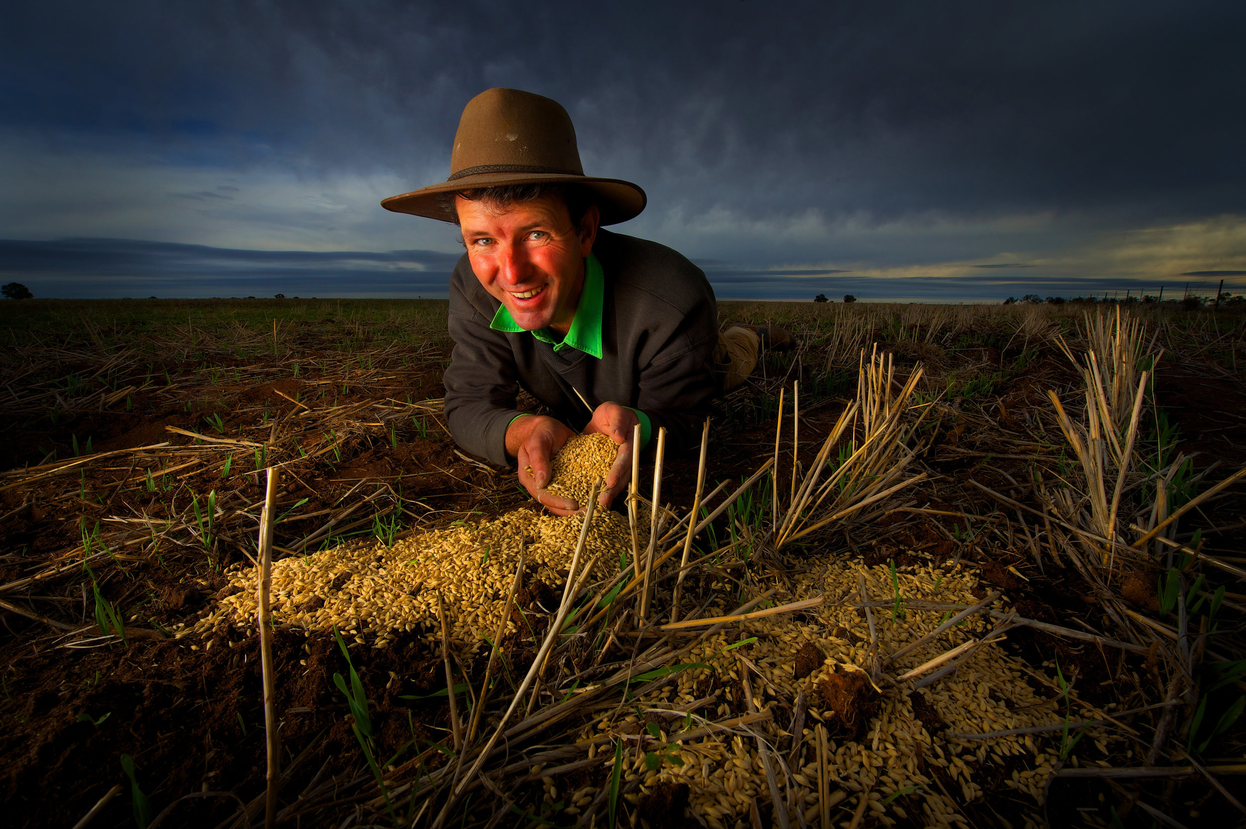 CHP_Export_11727995_Farmers enjoy the rains.Brett Hosking holds seed at his farm at Quambatook.jpg