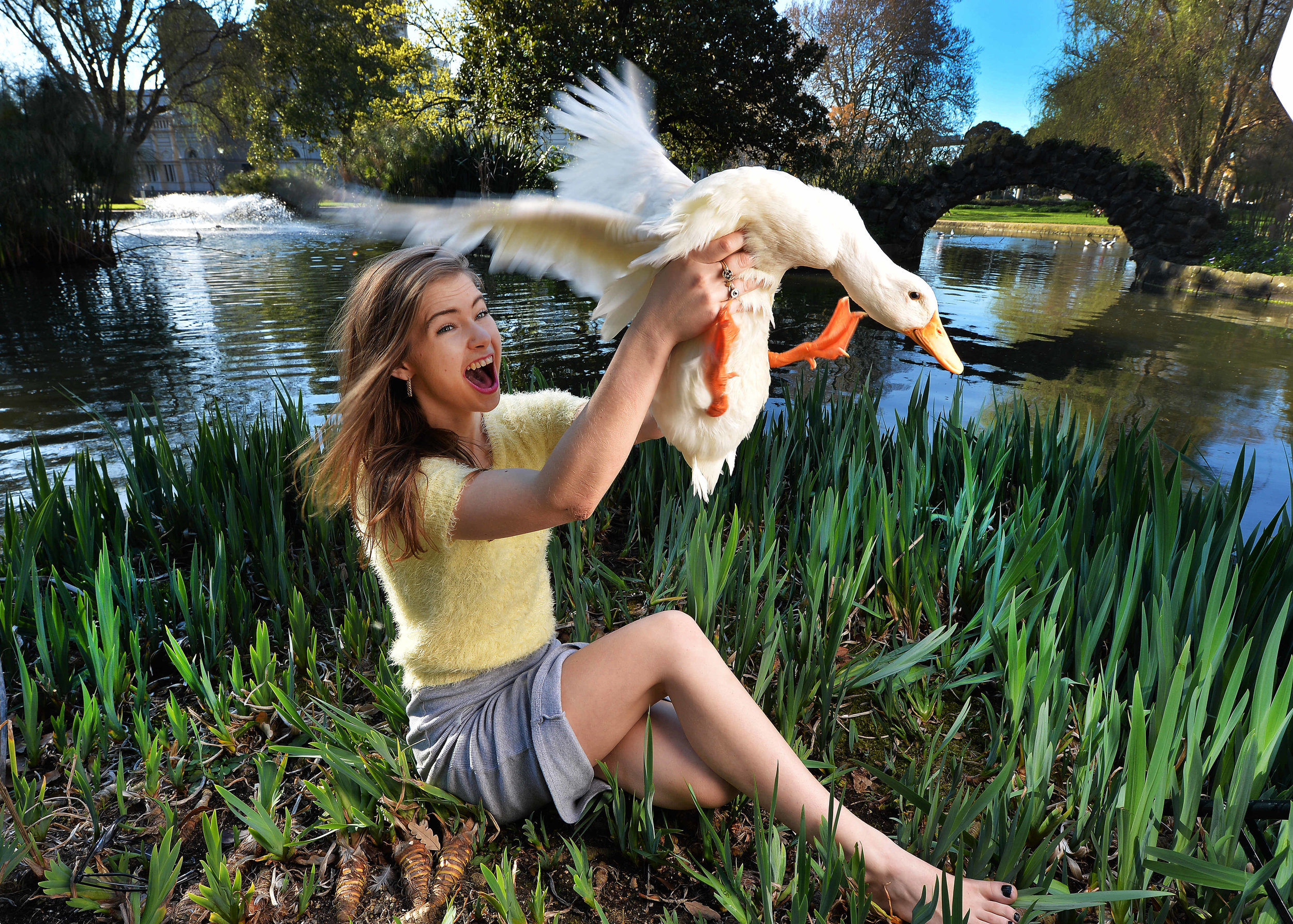 CHP_Export_124931318_Sara Tansy and her pet duck Louie relax at the Carlton gardensPictureRob Le.jpg